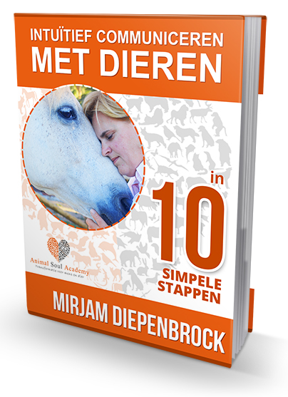 ebook ICMD in 10 stappen