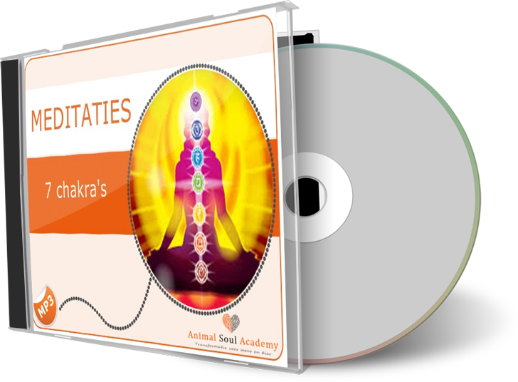 mp3 meditatie cd